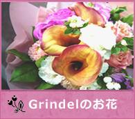 グリンデルのお花たち